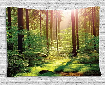 Amazon.com: Ambesonne Forest Tapestry Green Decor, Spring Time ...