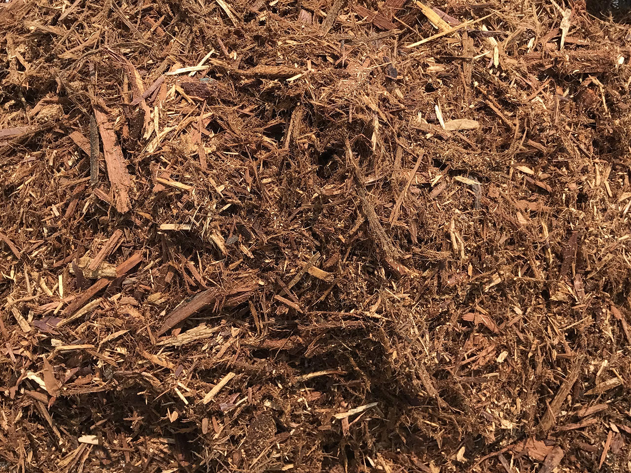 MIGHTY109 Natural Cedar Mulch 40 quarts plus 8 quarts FREE!