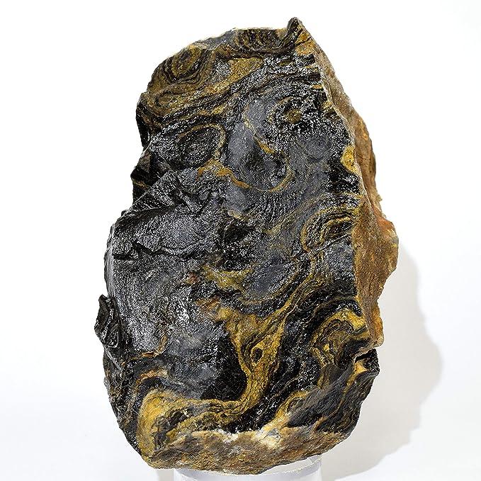 HQRP Granos de Piedra de Cristal orgánico fósil de 365 g de ...