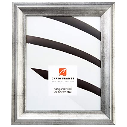 Amazon.com - Craig Frames 18x20 Picture/Poster Frame, Smooth ...
