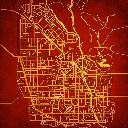Amazon Com Resident Evil Raccoon City Map Art Unframed 12 X 12