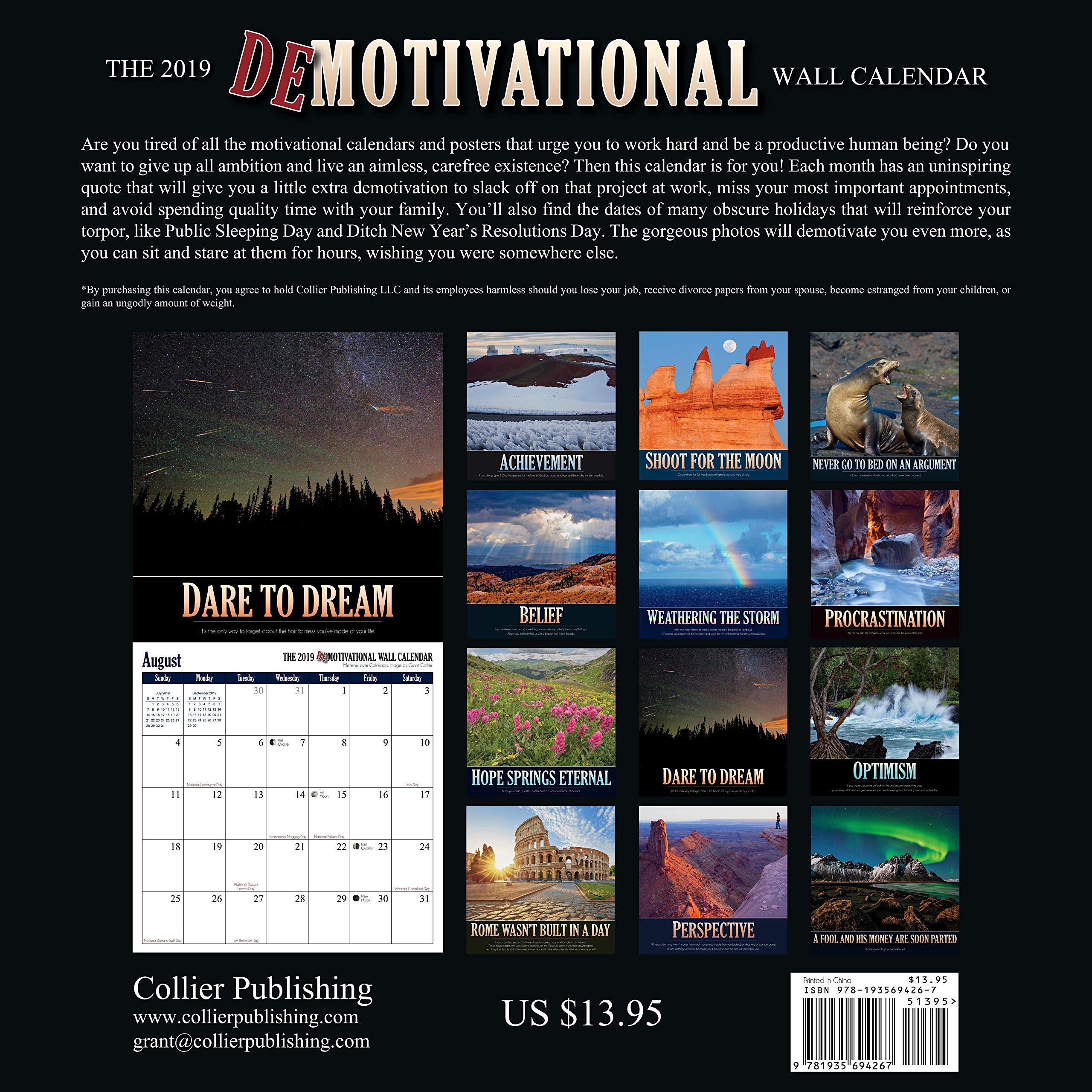 The 2019 Demotivational Wall Calendar Grant Collier 9781935694311