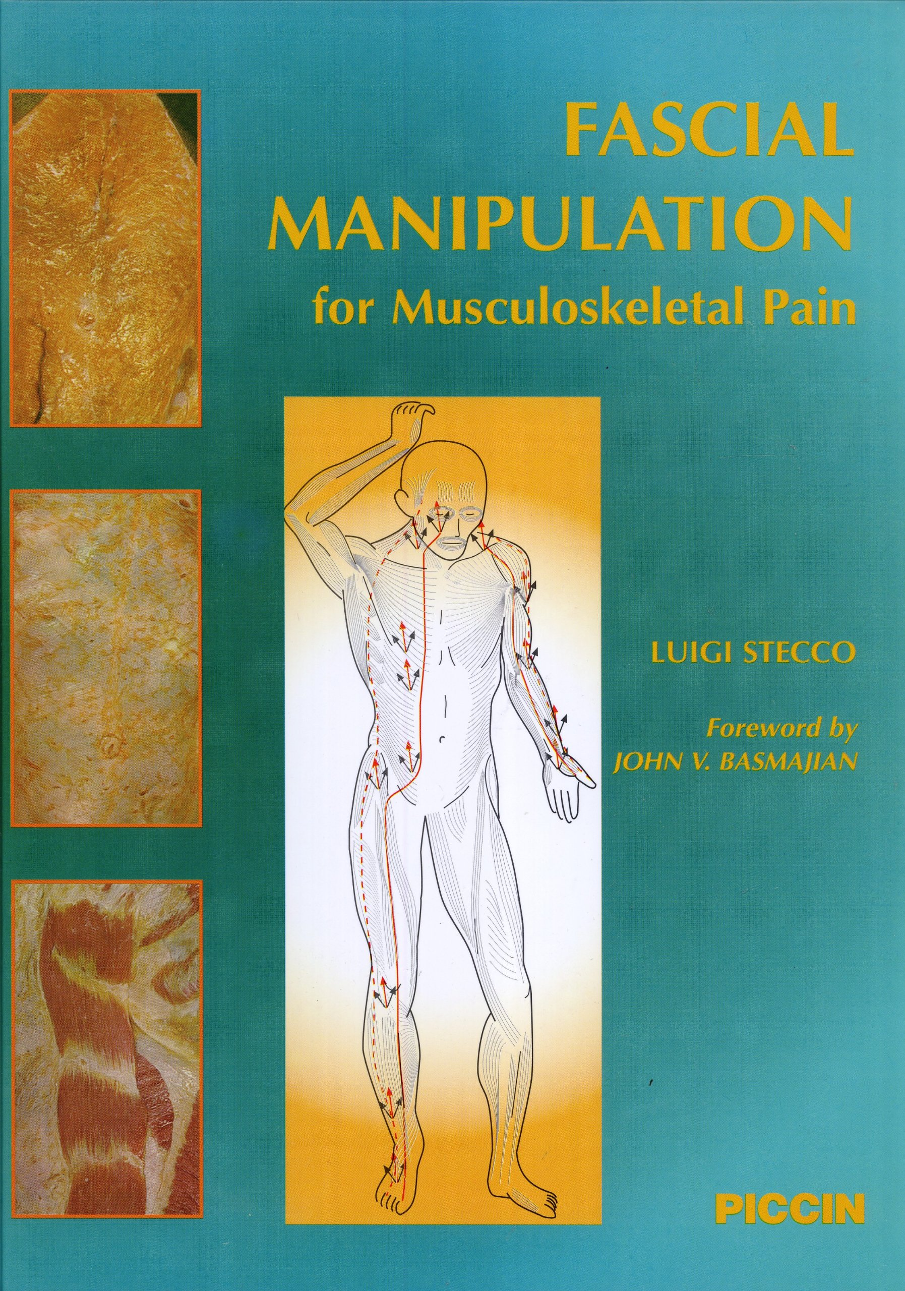 Fascial Manipulation For Musculoskeletal Pain Luigi Stecco