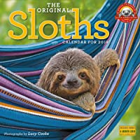 The Original Sloths Wall Calendar 2019