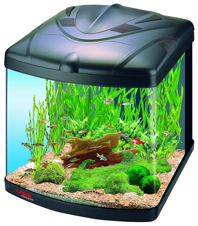 Amazon.com: Sera 15 Gallon Biotope 60 Nano Cube Aquarium: Everything Else