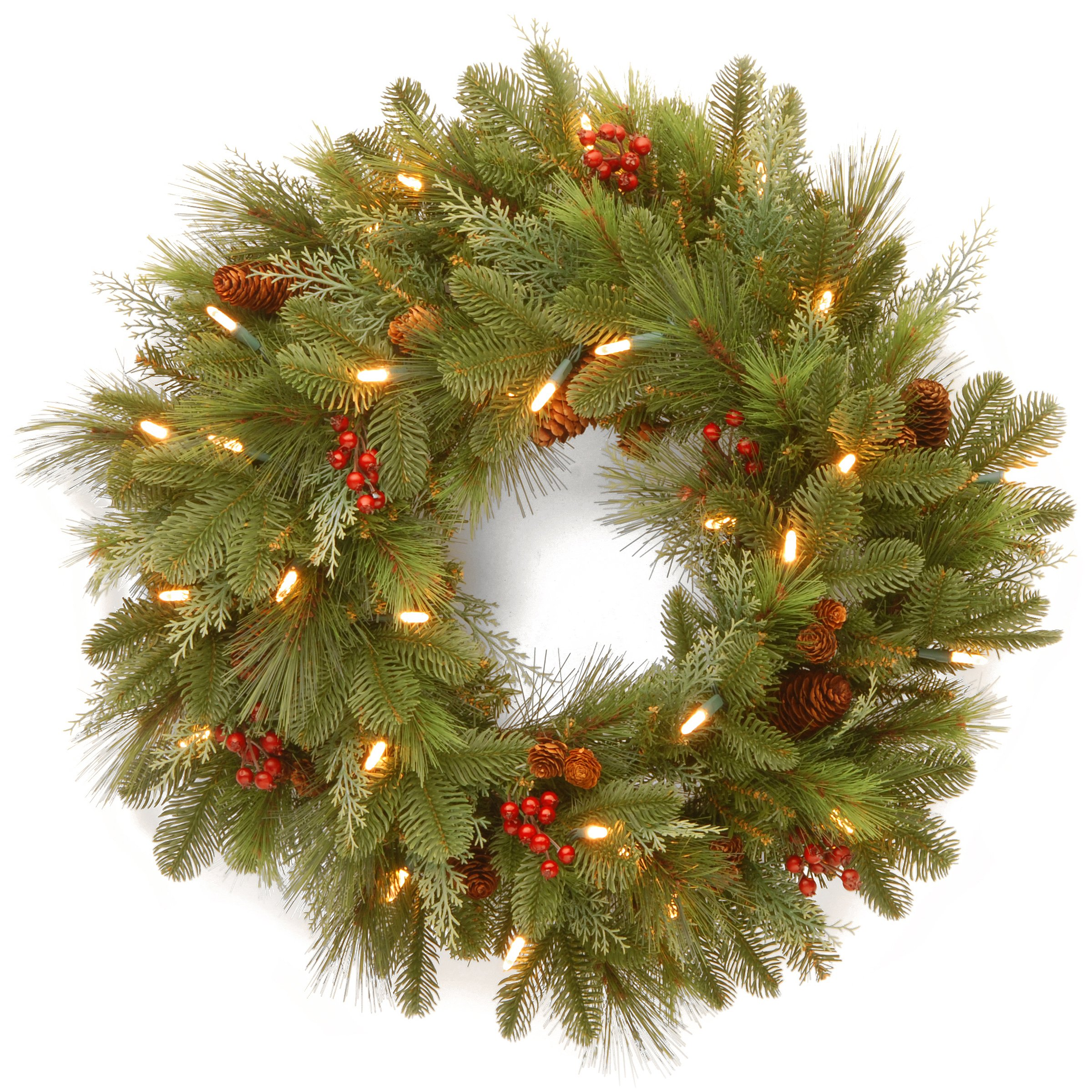 National Tree 24 Inch Noelle Wreath with 30 Battery Operated Soft White LED Lights (NL13-300L-24WB1)