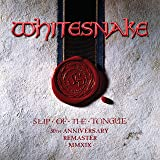 Slip Of The Tongue (Super Deluxe Edition) [2019 Remaster] [Explicit]