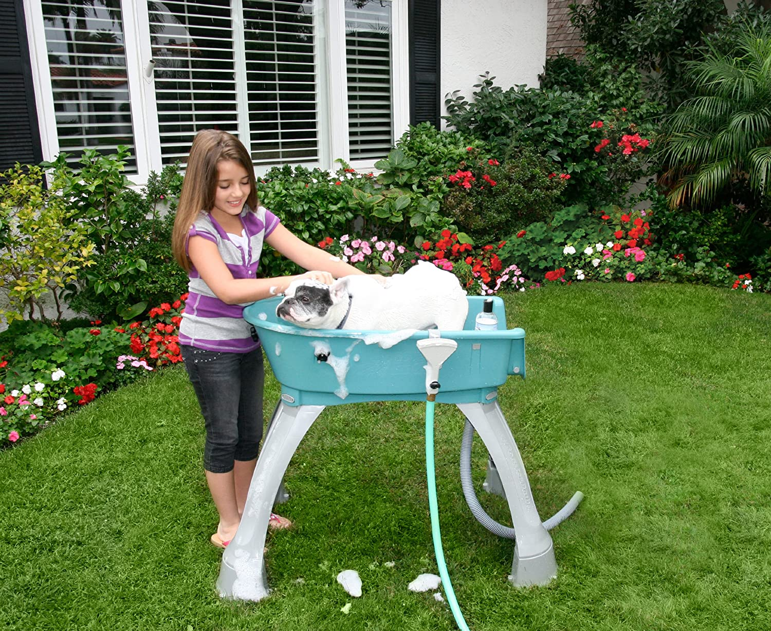 Amazon com   Booster Bath Elevated Pet Bathing Medium   Pet Shower And Bath  Supplies   Pet SuppliesAmazon com   Booster Bath Elevated Pet Bathing Medium   Pet Shower  . Dog Bathing Table. Home Design Ideas