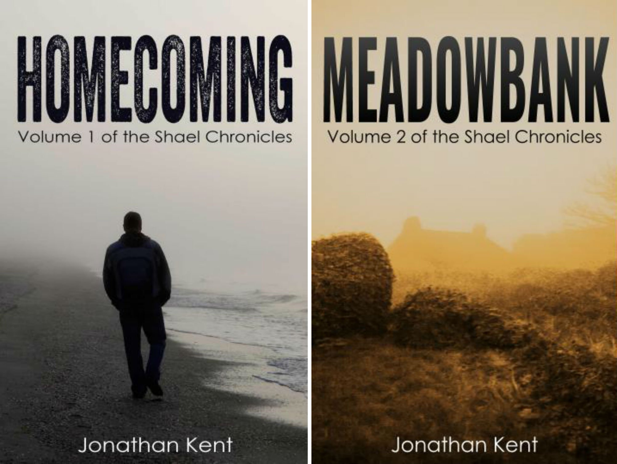 The Shael Chronicles (2 Book Series)