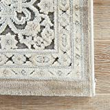 Jaipur Living Regal Oriental Gray/Silver Area Rug