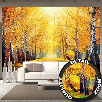 Fototapete goldener Herbst Wandbild Dekoration Birken Wald Natur ...