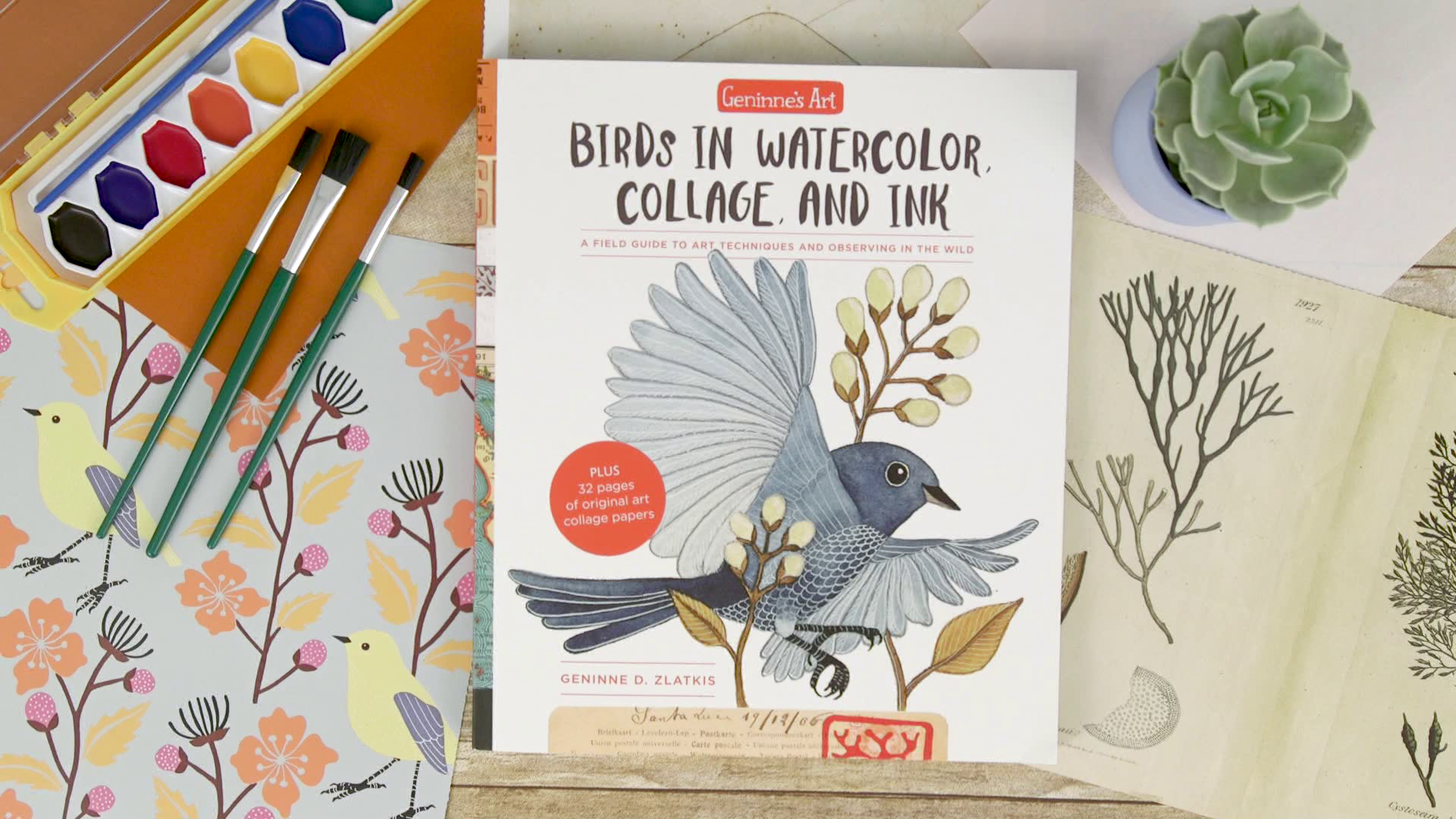 Image result for Geninne's Art: Birds in Watercolor, Collage, and Ink: A field guide to art techniques and observing in the wild by Geninne D. Zlatkis.