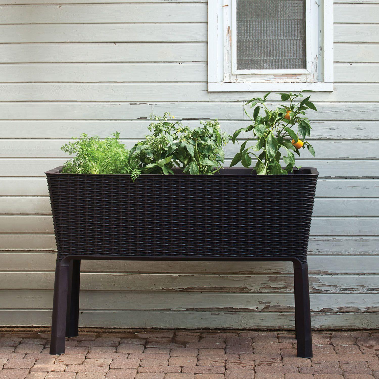 Keter Easy Grow Elevated Flower Garden Planter - Sam's Club