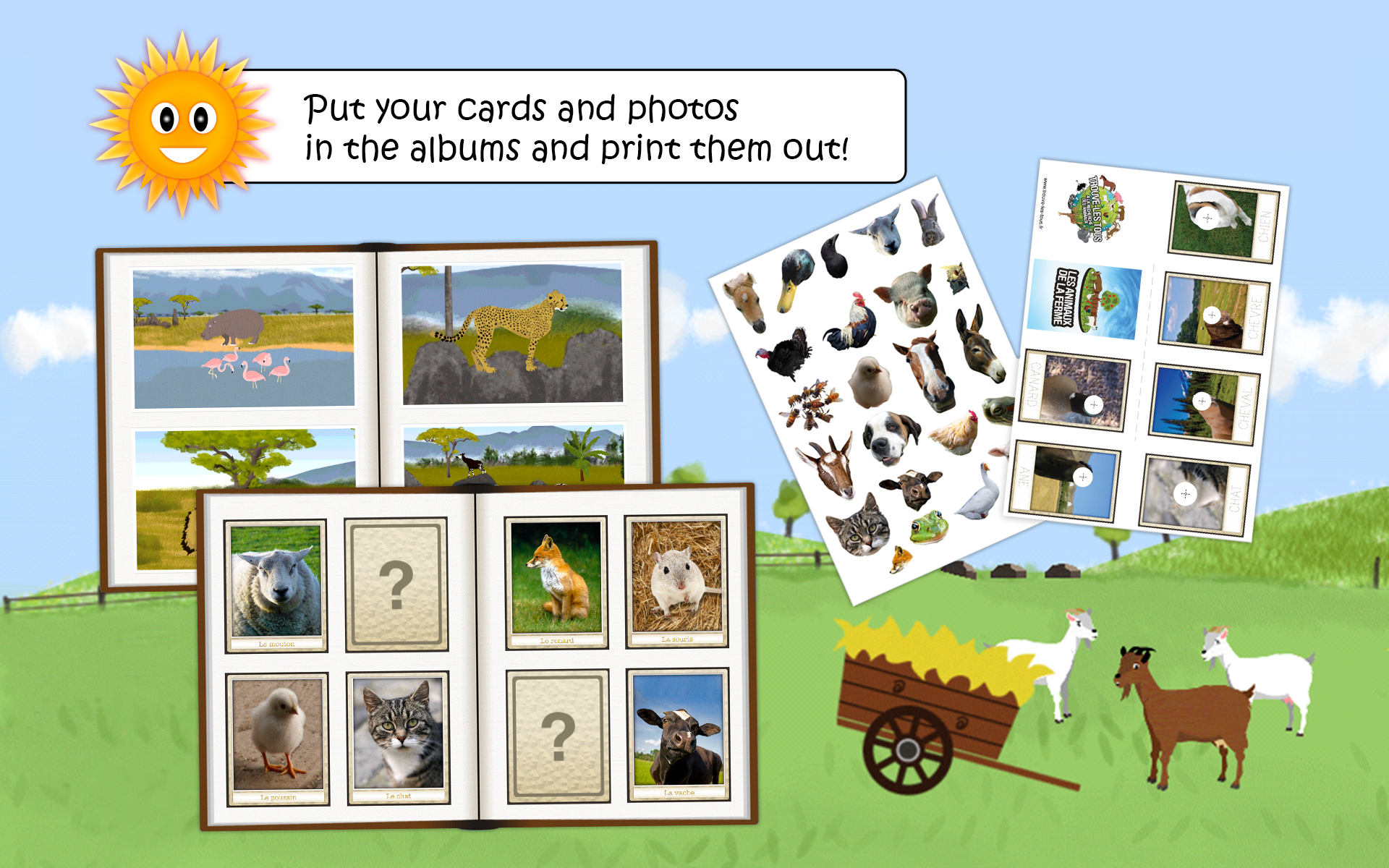 amazon com find them all looking for animals educational game