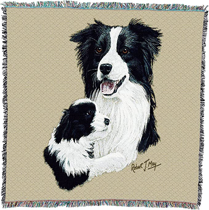 USA Size 54x54 Welsh Corgi 2 Woven Throw Blanket with Fringe Cotton Pure Country Weavers
