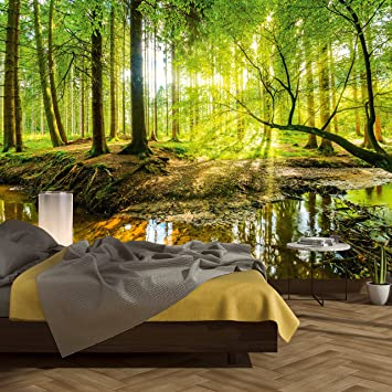 murimage Fototapete Wald 366 x 254 cm Bäume Holz Sonne Natur Schlafzimmer  Wohnzimmer inklusive Kleister