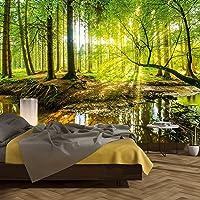 murimage Fotobehang bos 366 x 254 cm inclusief lijm bomen hout zon natuur slaapkamer woonkamer