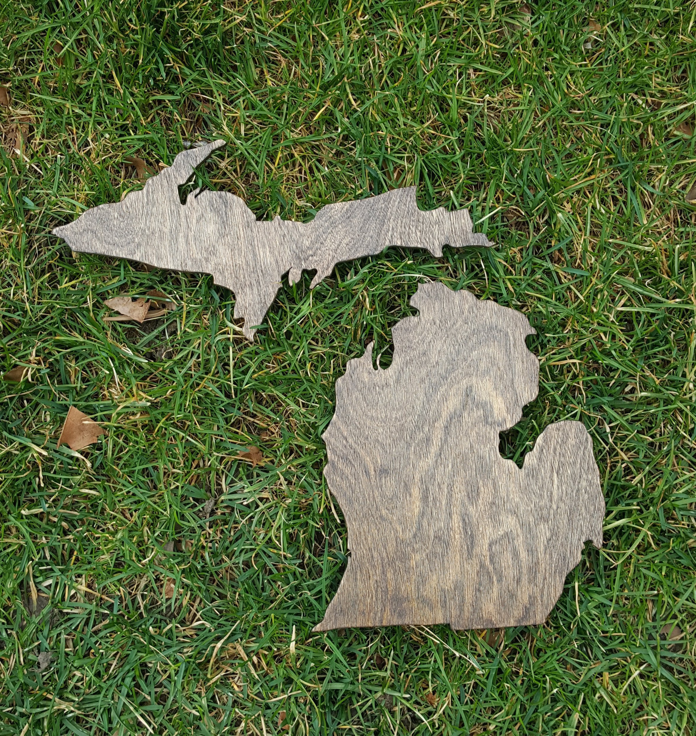 Rustic Michigan Wooden Gallery Wall Art Cutout Office College Dorm Home Decor