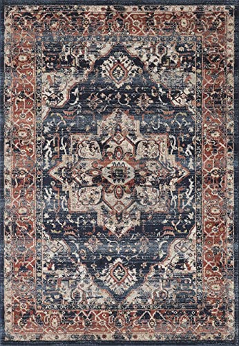 Abani Rugs Large Navy Beige Oriental Medallion Area Rug Distressed Vintage Burgundy Accents, Babylon Collection Turkish Made Superior Comfort Construction 3 x 5 Rectangle