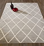 "DIAGONA DESIGNS Contemporary Moroccan Trellis Design Area Rug, Grey/Ivory, 94"" L x 114"" W"