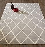"""Diagona Designs Contemporary Moroccan Trellis Design Area Rug, 63"""" W x 87"""" L, Grey/Ivory"""