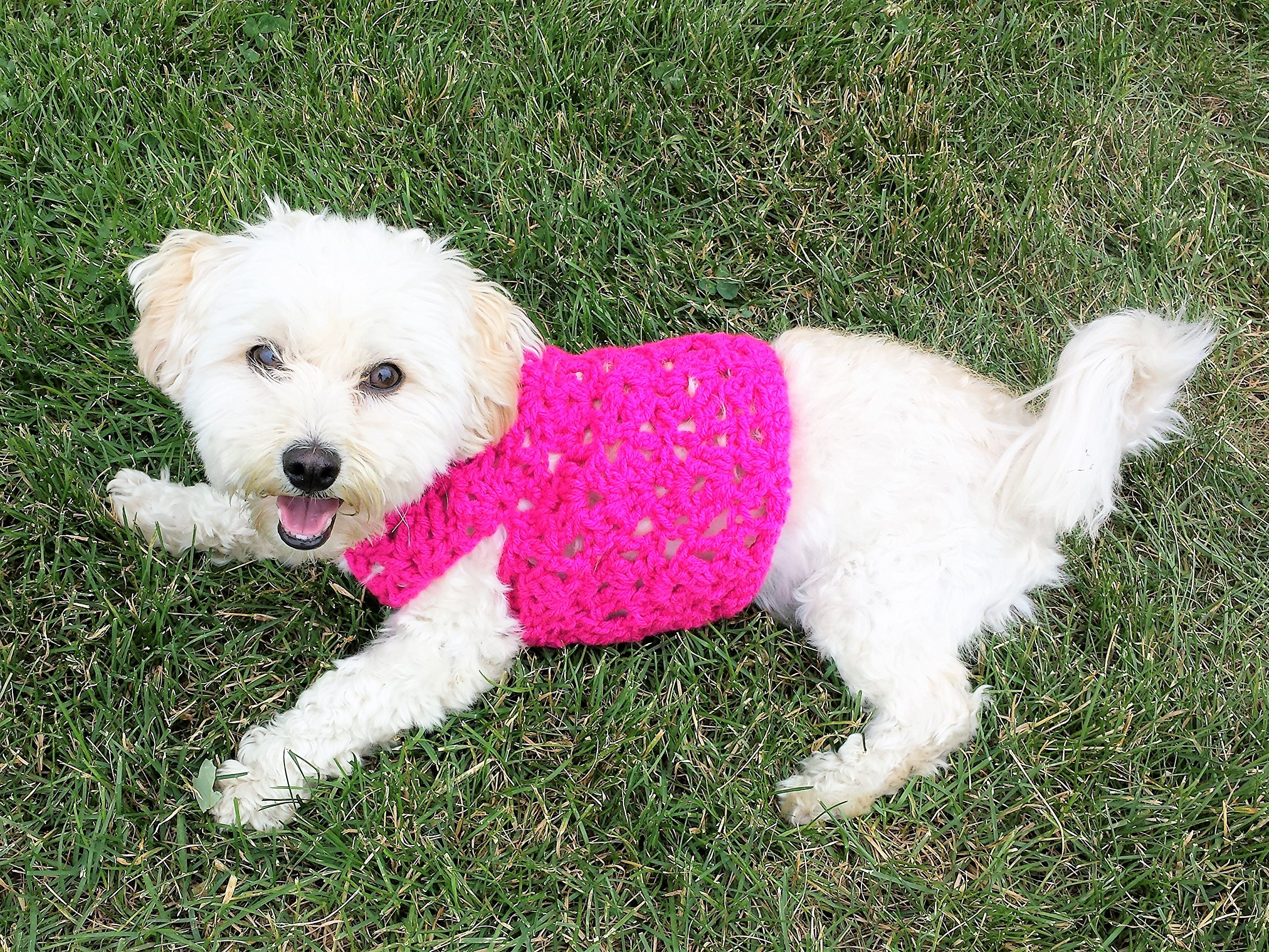 Hot Pink Dog Sweater, available in sizes XXS -L