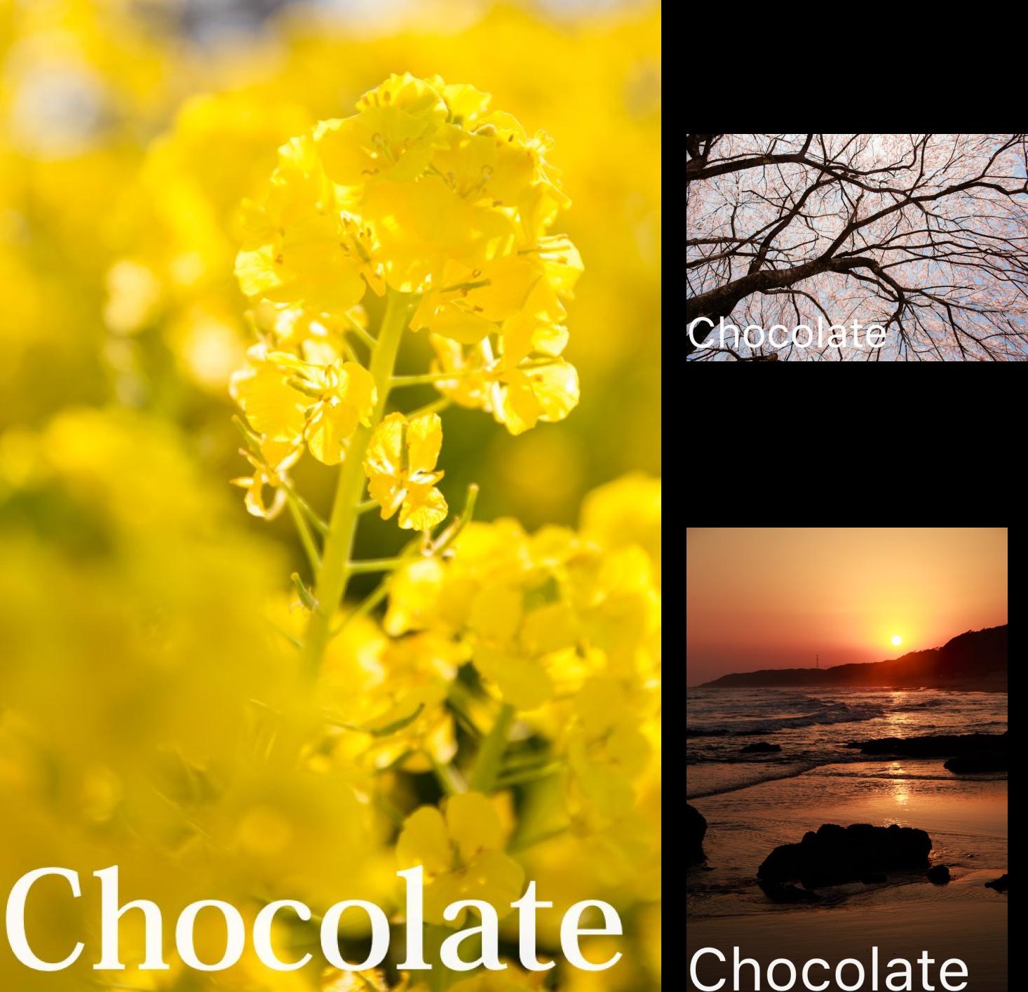 [まとめ買い] Chocolate