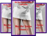 img - for Way Hot Stories (4 Book Series) book / textbook / text book