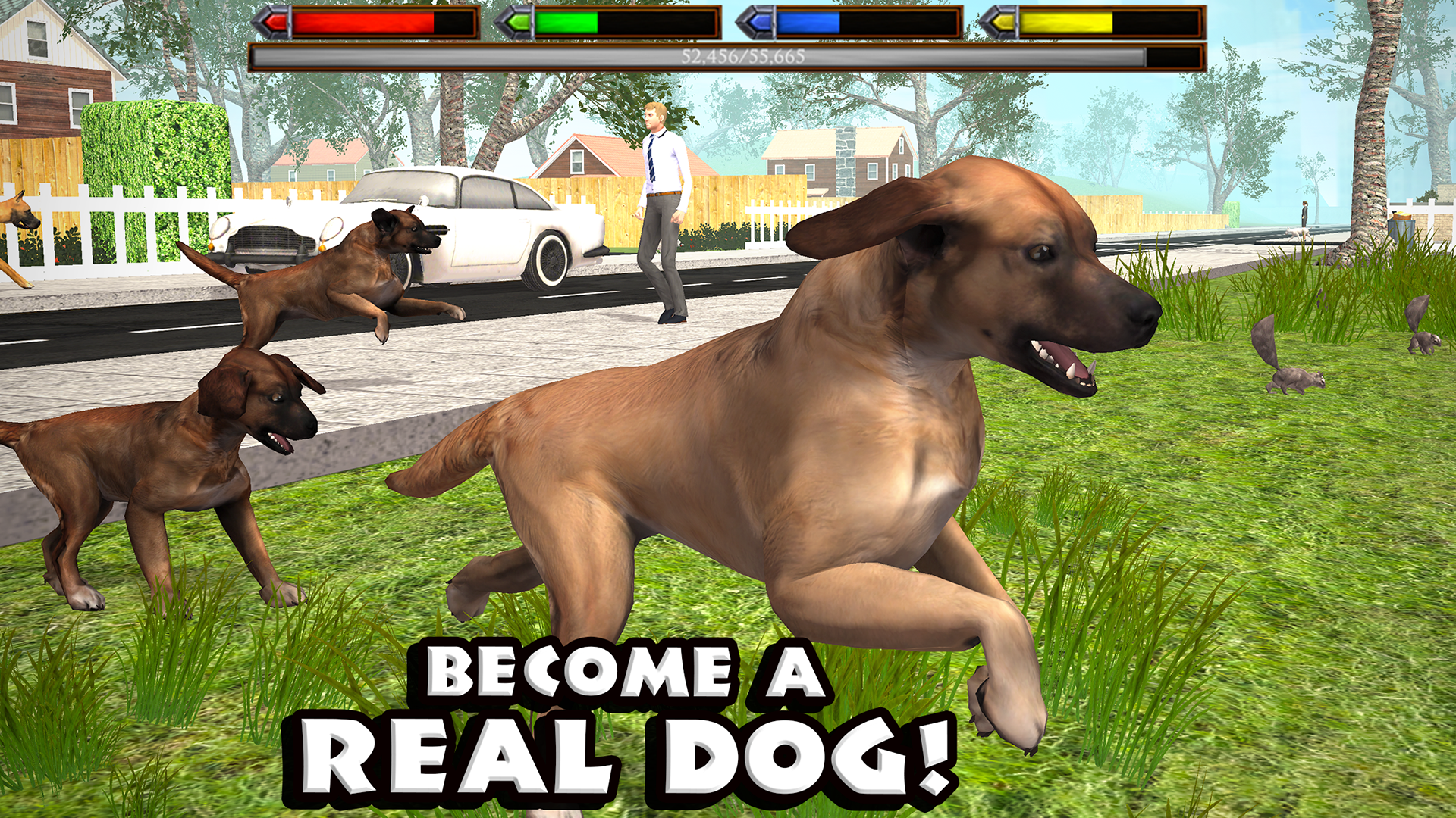 Dogs Games For Free