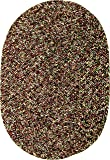 Sabrina Tweed Indoor/Outdoor Oval Braided Rug, 7 by
