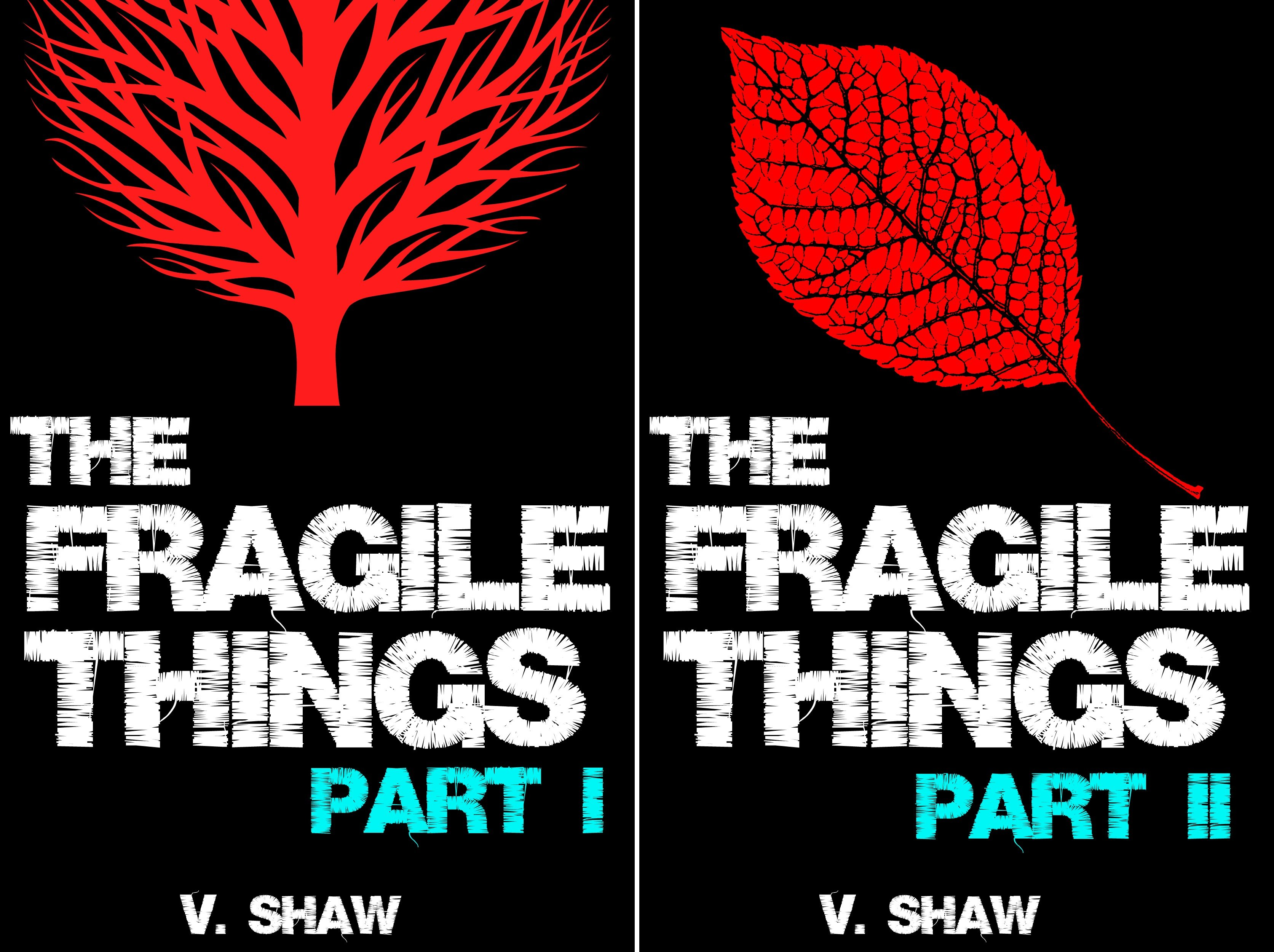 The Fragile Things (2 Book Series)