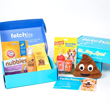 Fetchbox The Monthly Subscription Box For Dogs Curated By Fetch For Pets