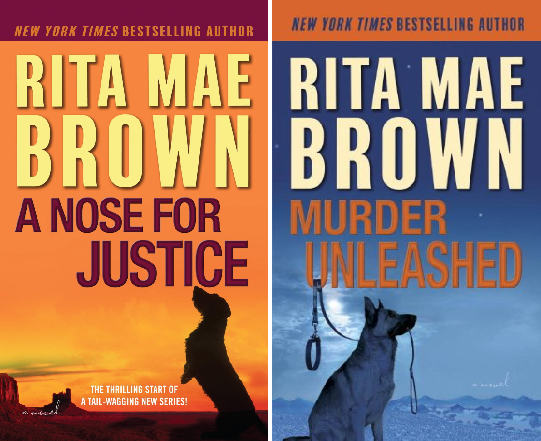 Mags Rogers (2 Book Series)