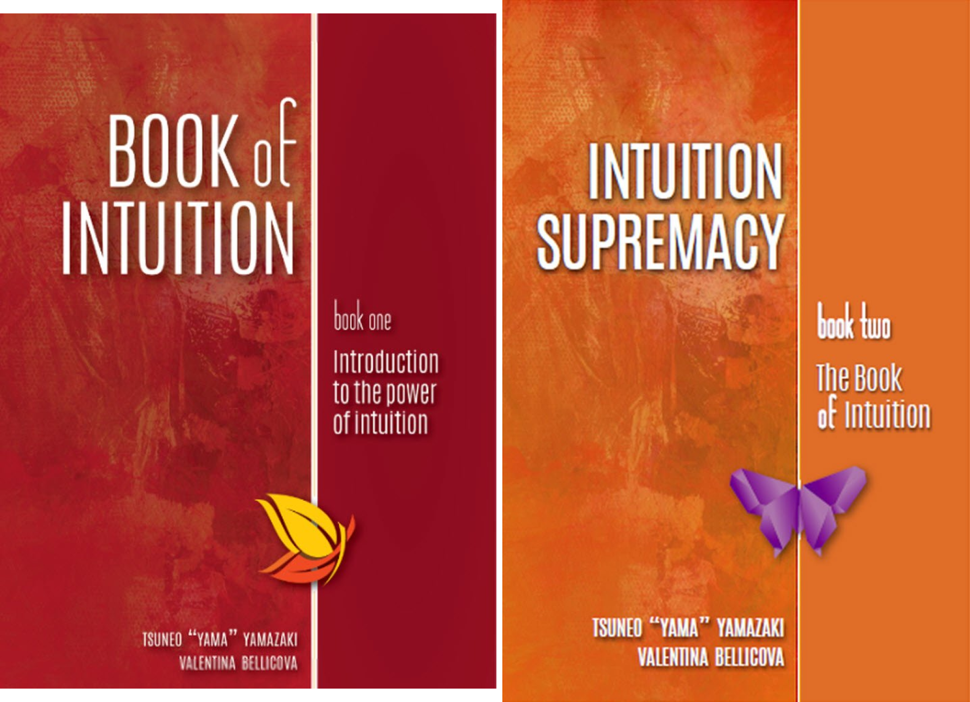 Intuition (2 Book Series)
