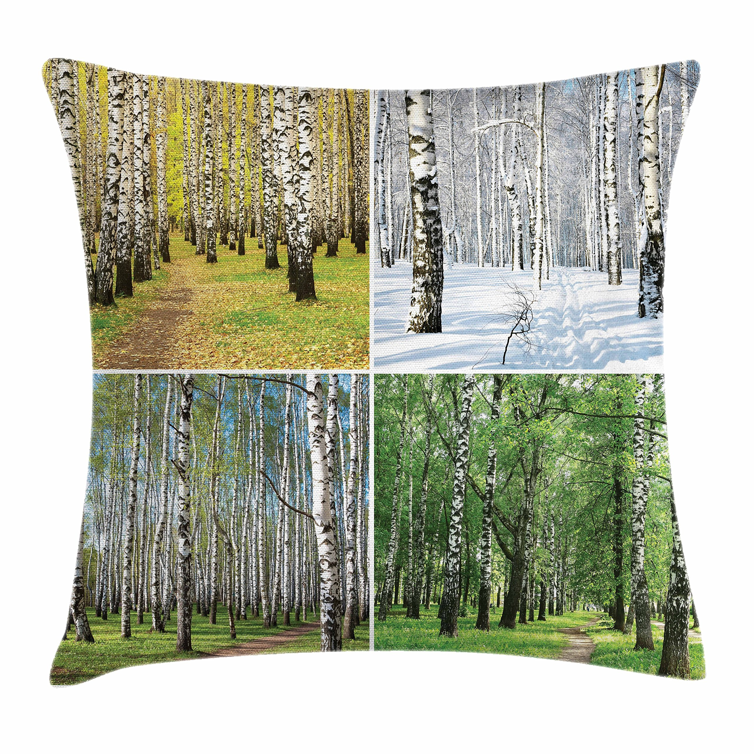 Ambesonne Landscape Throw Pillow Cushion Cover, Pathway in Woodland Birch Tree Jungle in The Fall Winter Spring Summer Season, Decorative Square Accent Pillow Case, 18'' X 18'', Green White