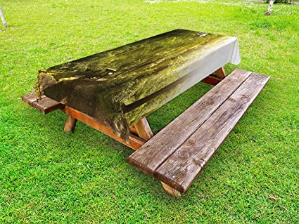 Lunarable Nature Outdoor Tablecloth, Sunny Rainforest With Wood Bench In  Olympic National Park Washington USA