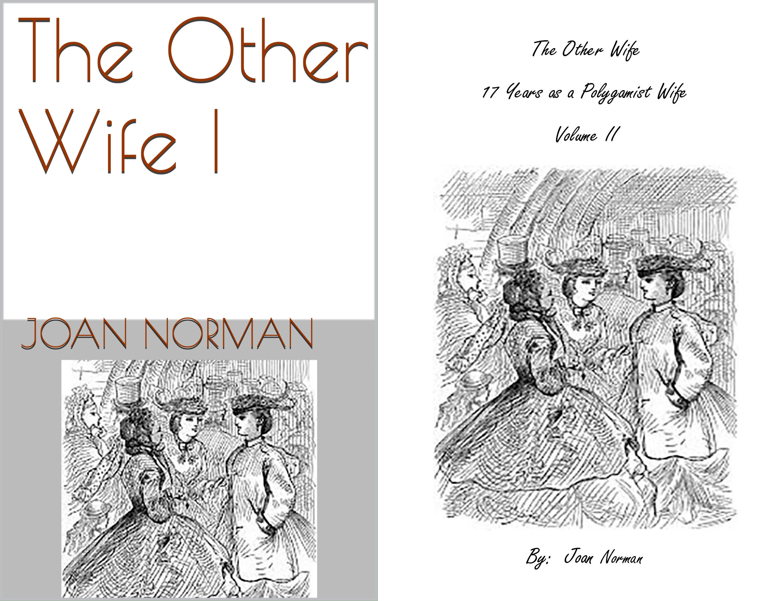 The Other Wife (2 Book Series)