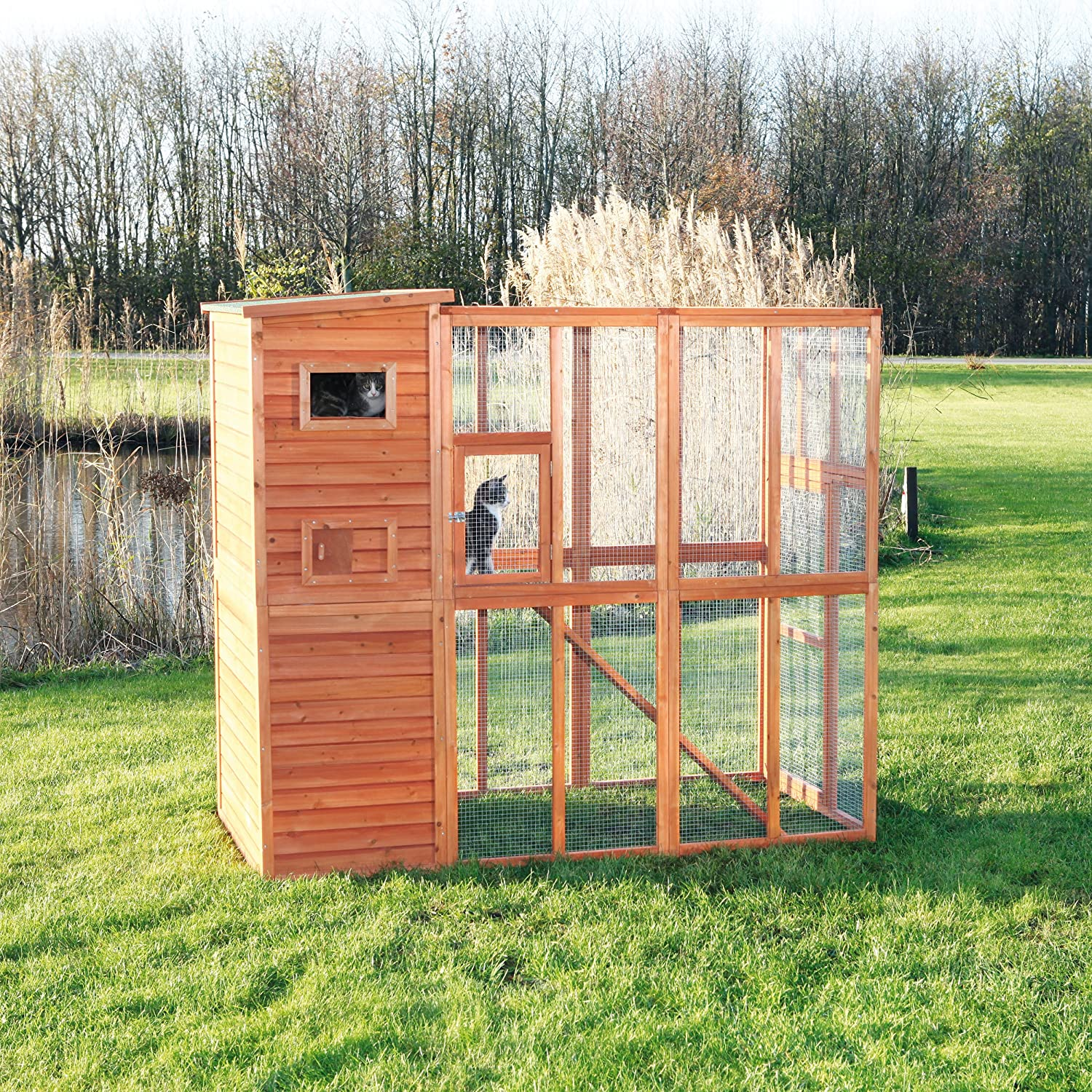 Top 6 Best Outdoor Cat Run Enclosure Reviews in 2021 5