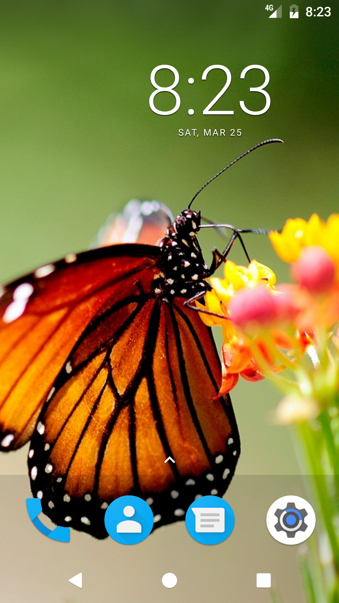 Butterfly HD Wallpapers: Amazon.com.br: Amazon Appstore