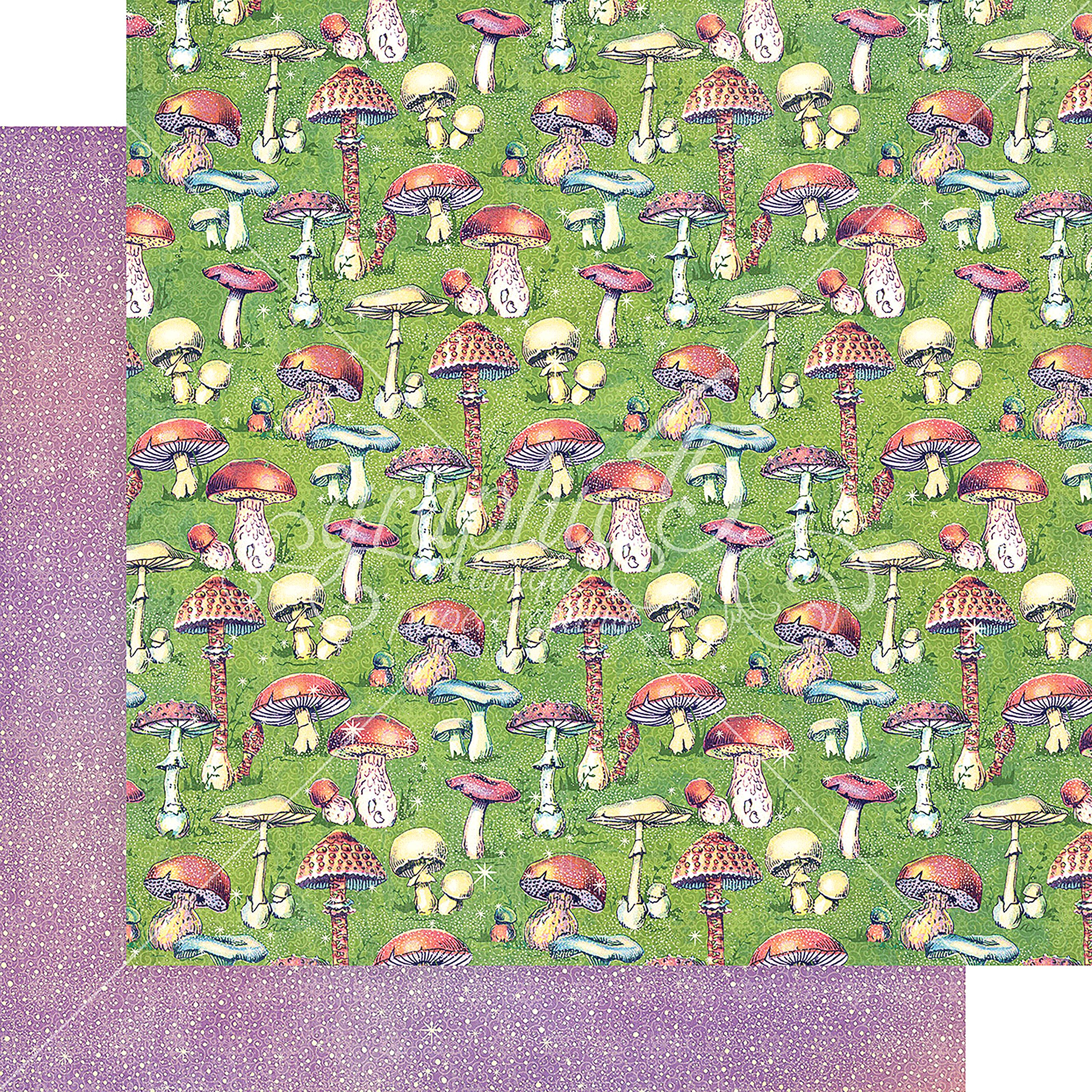 Graphic 45 Tiny Toadstools Fairie Dust Double-Sided Cardstock 12''X12''