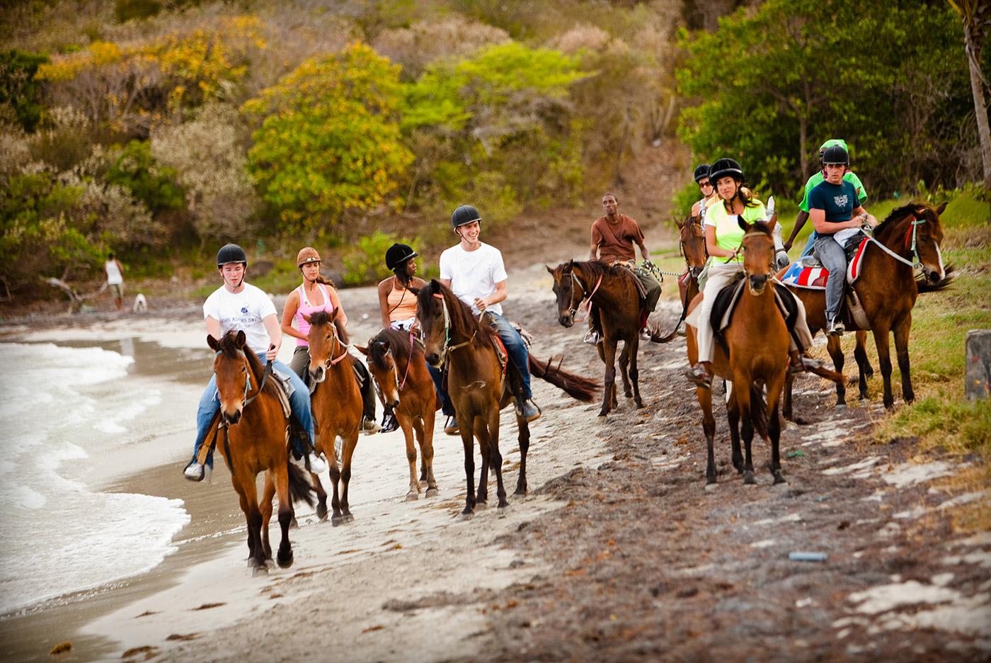St Lucia Adventure Tours: Horseback Ride 'n' Swim
