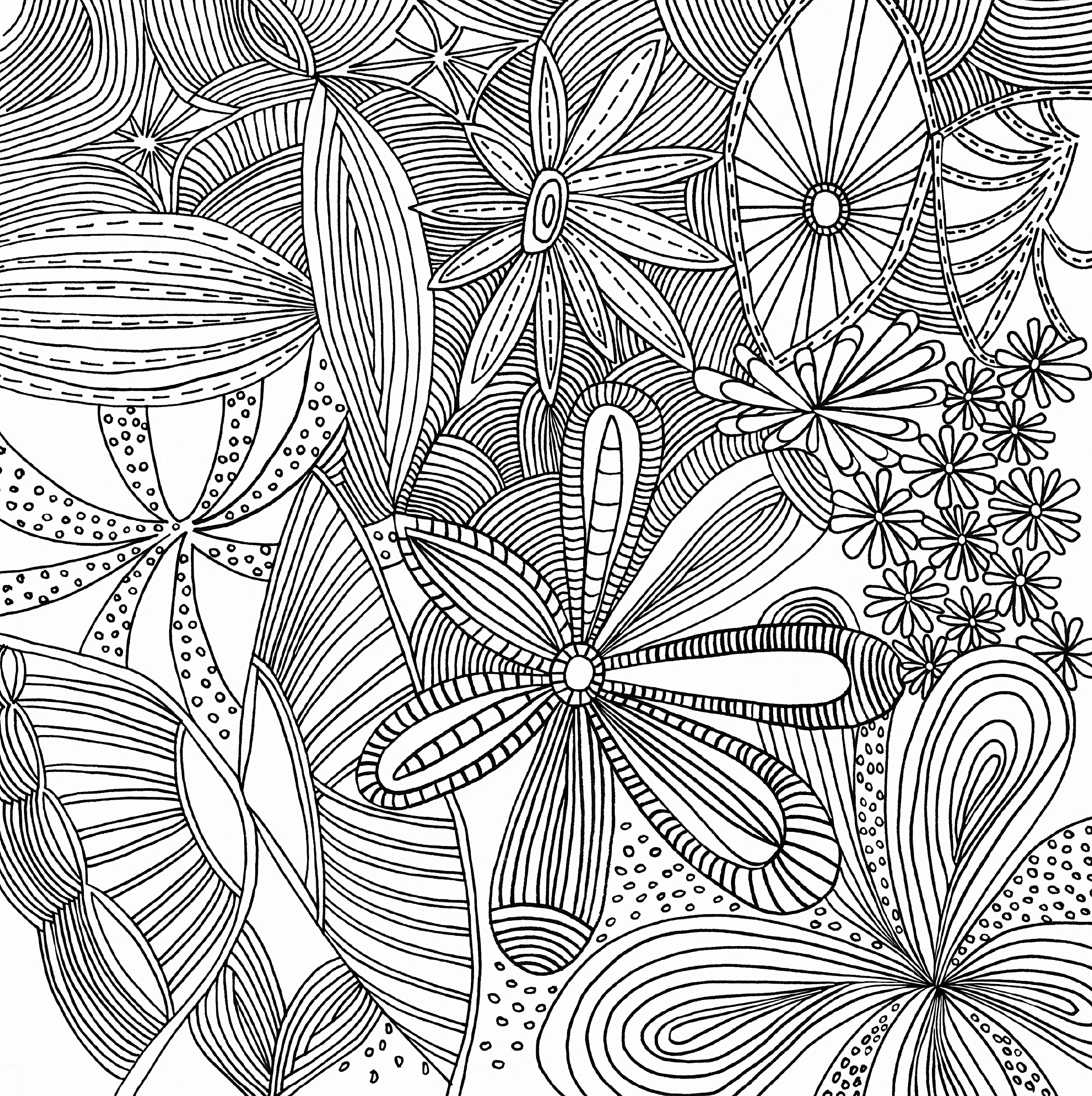 Serenity Adult Coloring Book stress relieving designs Studio