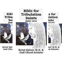 Bible for Tribulation Saints (4 Book Series)