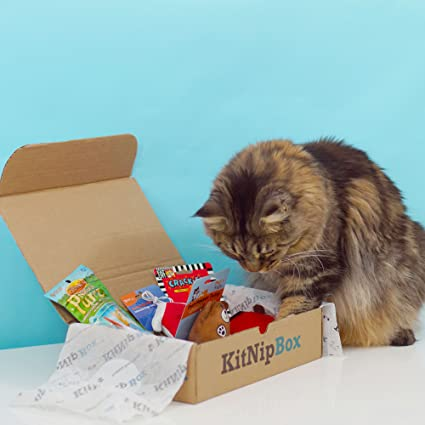 b85b3761161a Amazon.com: KitNipBox - Monthly Cat Subscription Box of Cat Toys, Treats  and Goodies: Happy Cat: Memberships and Subscriptions