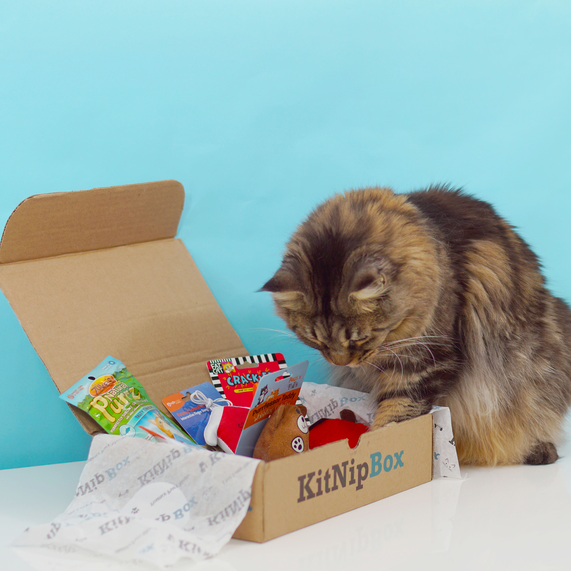 KitNipBox - Monthly Cat Subscription Box of Cat Toys, Treats and Goodies: Happy Cat (Best Cat Subscription Box)