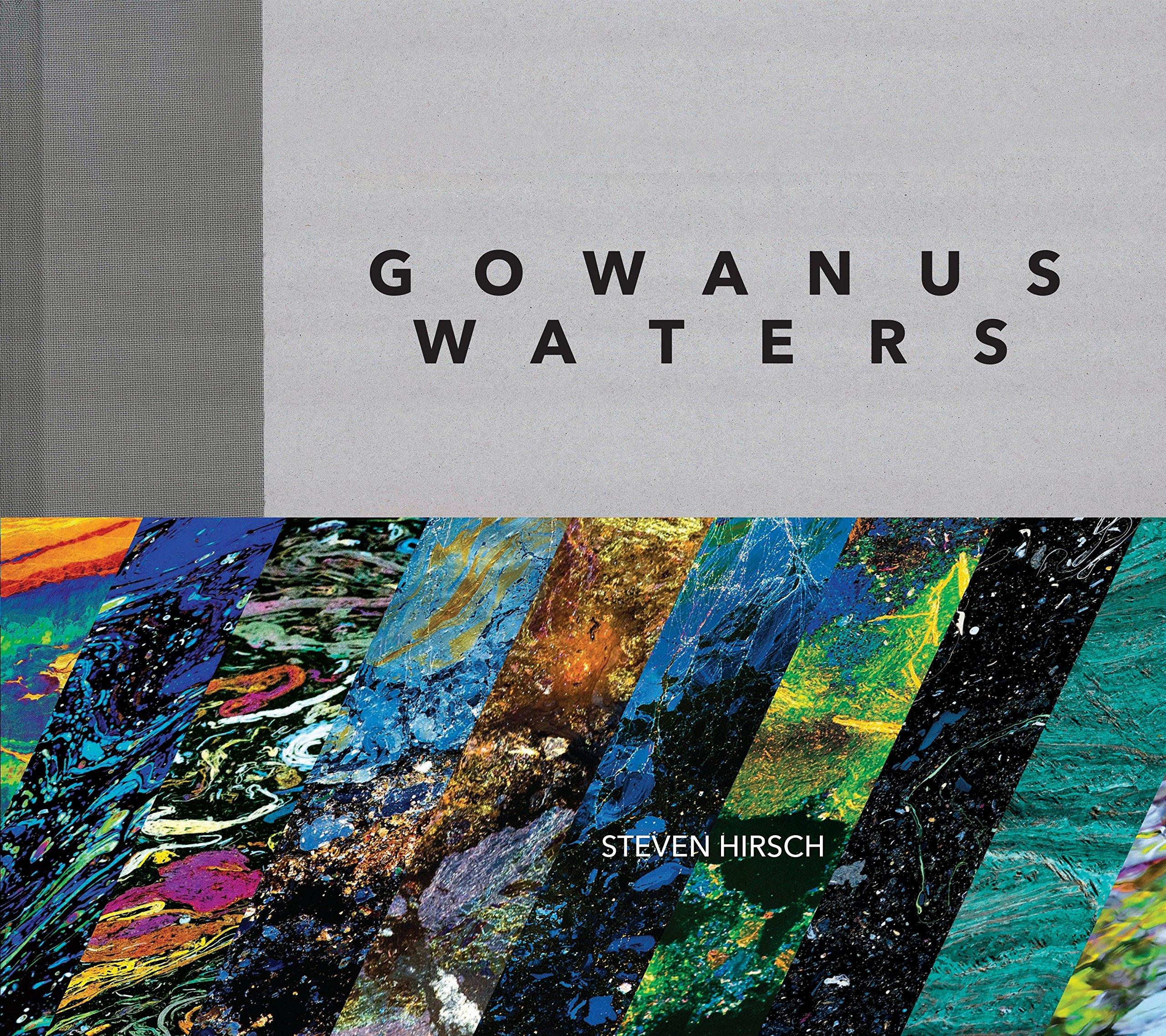 Download Gowanus Waters ebook