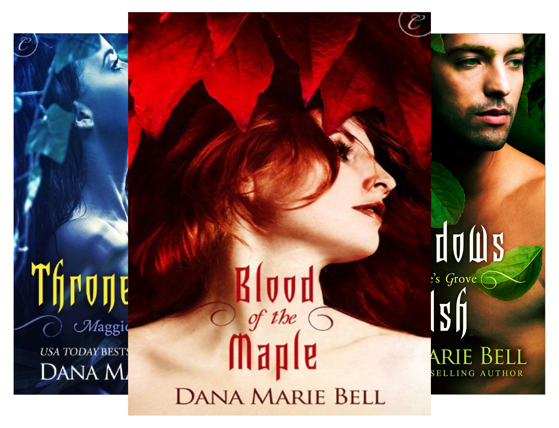 Maggie's Grove (4 Book Series)
