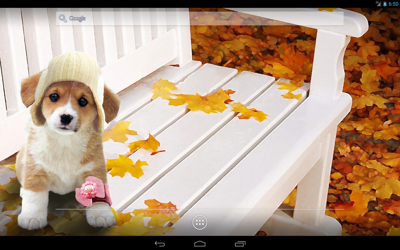 Cute Puppy Interactive Live Wallpaper: Amazon.es: Appstore