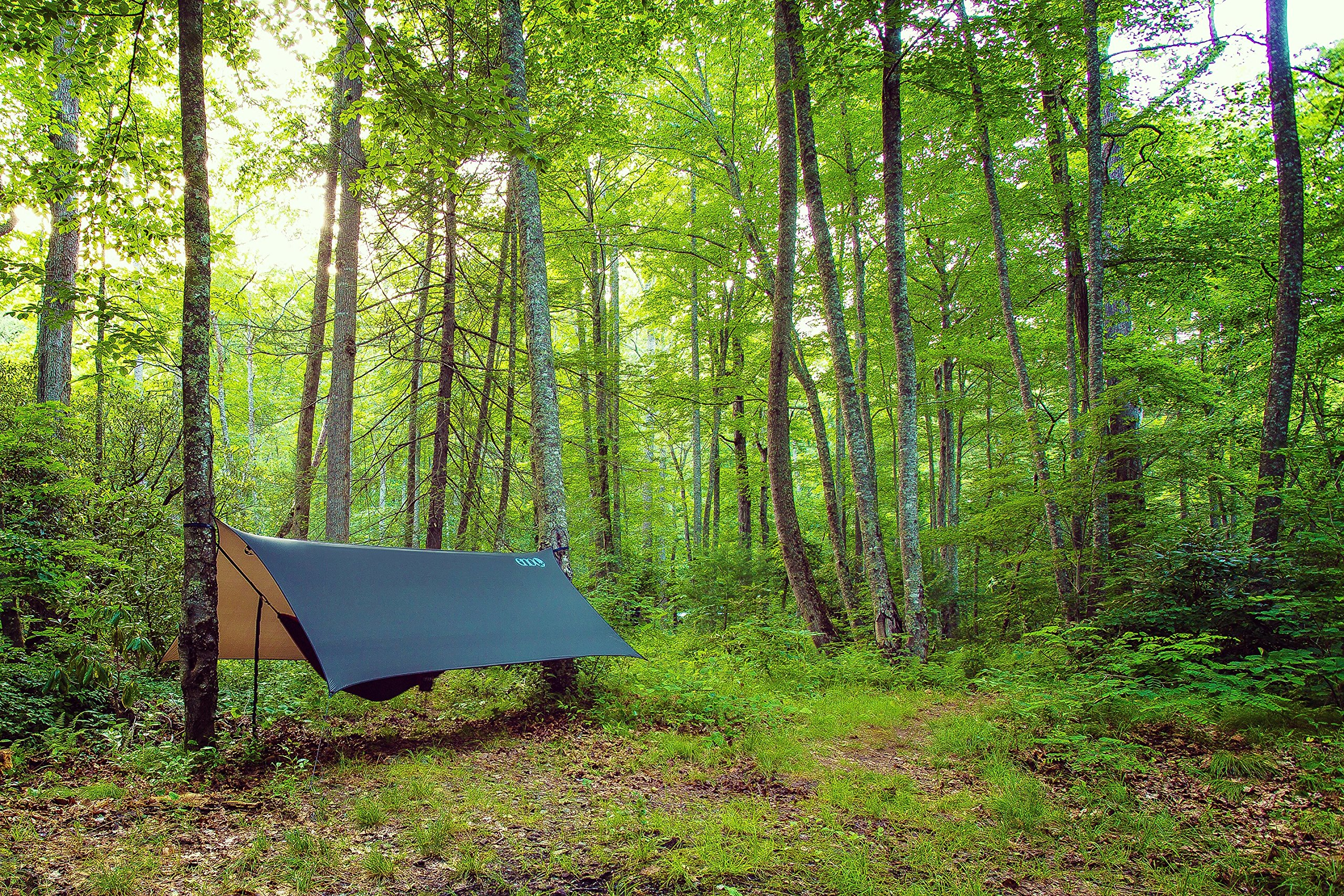 ENO - Eagles Nest Outfitters ProFly XL Rain Tarp, Ultralight Camping Tarp, Navy/Charcoal by ENO