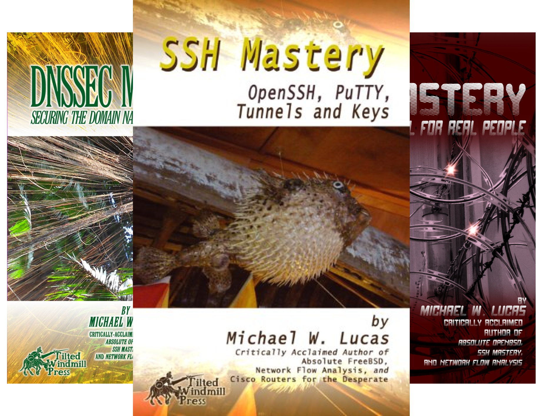 IT Mastery (11 Book Series)